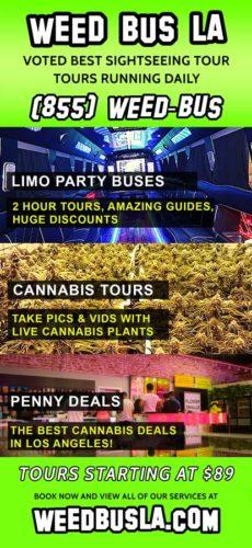 Unperson-Studio-Weed-Bus-LA